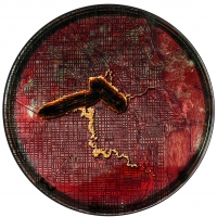geobacter icon