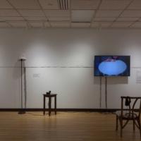 Visiting Artist / WCC